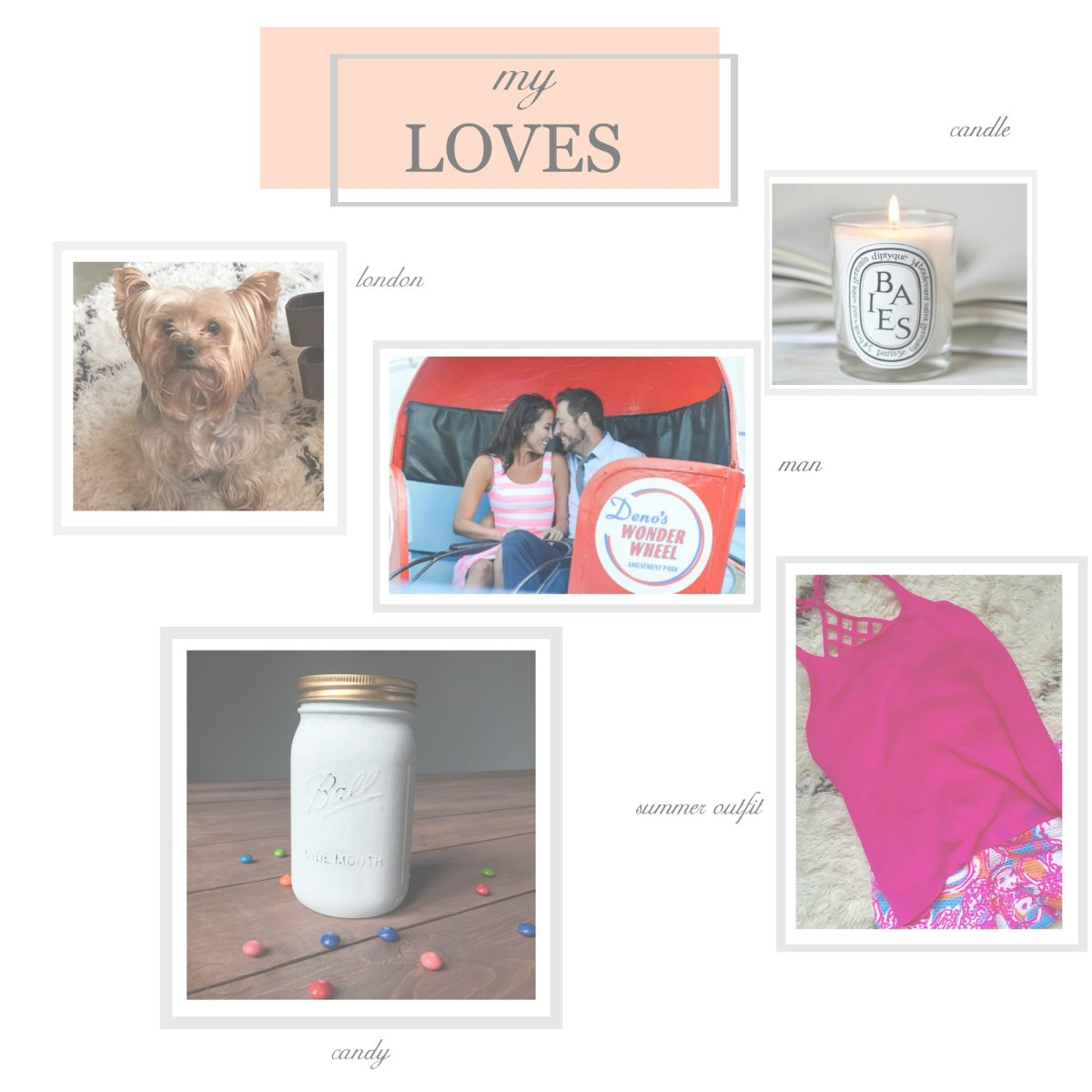 Elizabeth Bixler Designs Favorites and Loves - my yorkie london, my husband, dipitique baies candle, skittles candy, summer outfit lilly pulitzer- these are a few of my favorite things