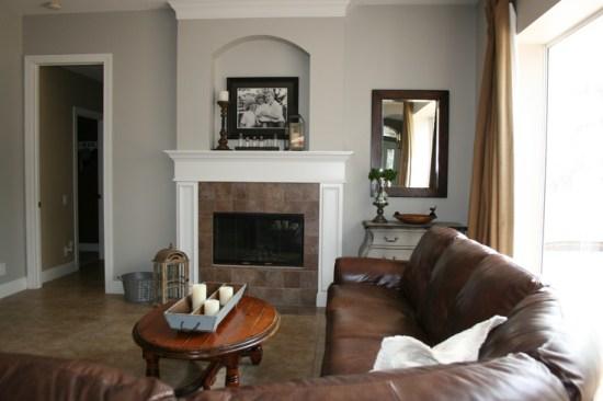 Really Pretty Sherwin Williams Collonade Gray for living room
