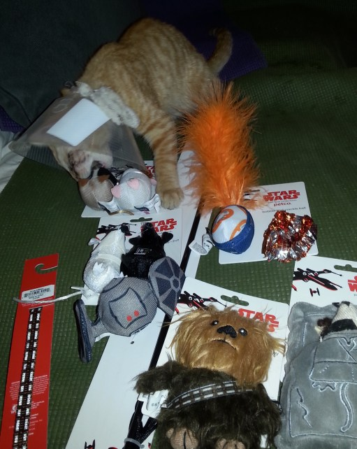 BooBoo Kitty and Star Wars Toys