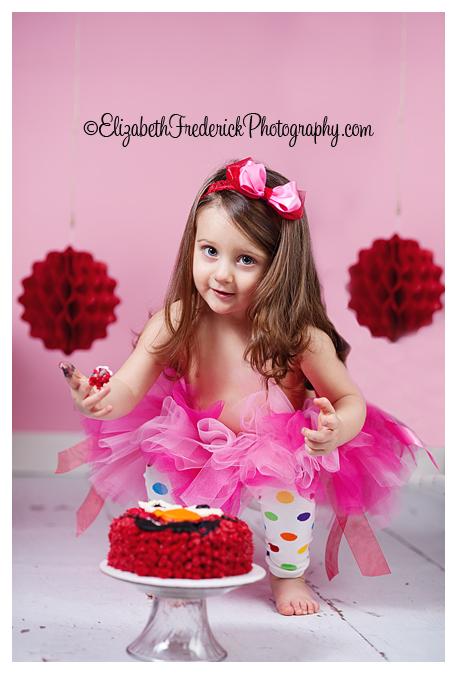 CT Smash Cake Photographer