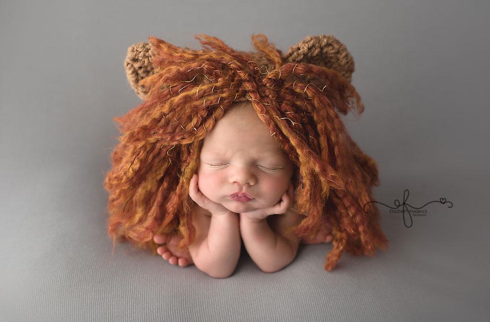 Lion Newborn | Noah's Ark Newborn | CT newborn photographer elizabeth frederick photography