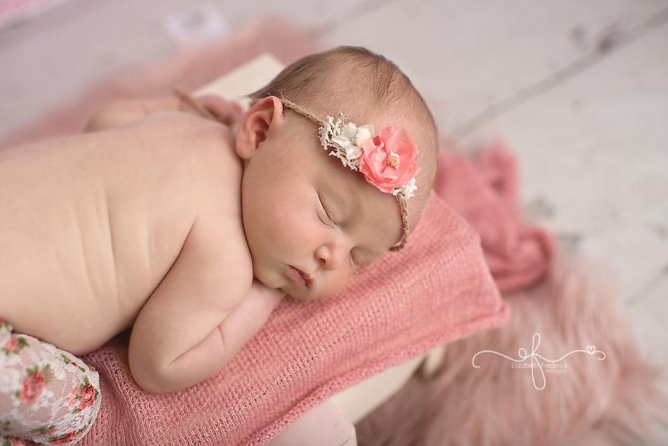 Newborn Photography Session CT Newborn Photographe