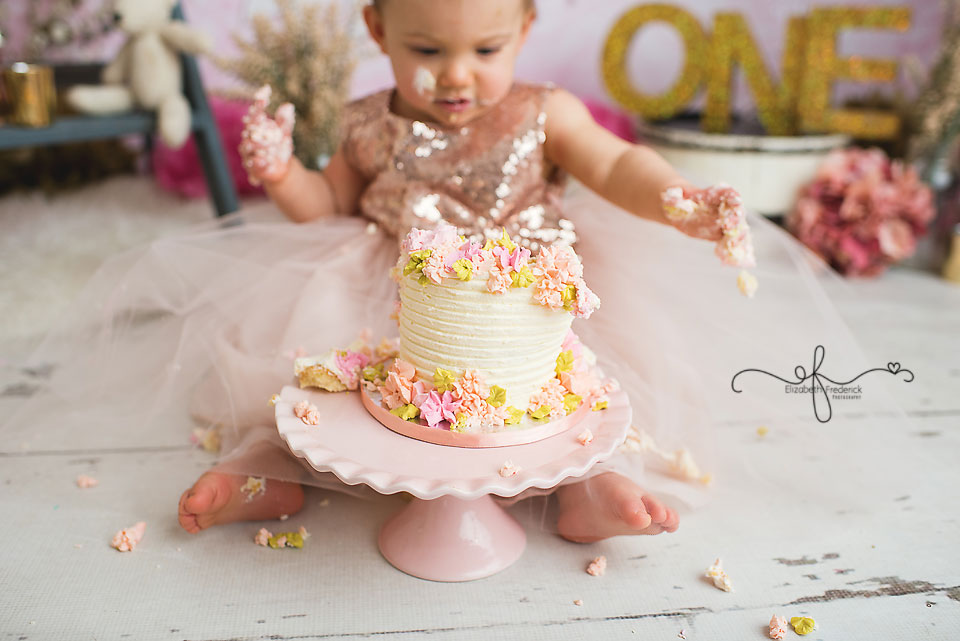 Pink & Gold Smash Cake Photography Session CT Smash Cake Photographer Elizabeth Frederick Photography