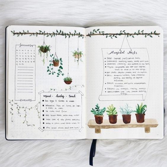 houseplant bullet journal