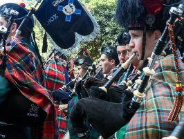 In the thick of the massed pipers
