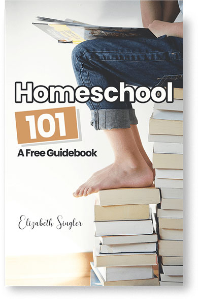 Free how to Homeschool Guidebook