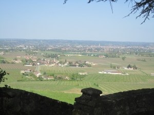 View of Bergerac in the distance and local  vineyards