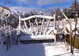 driftwoodbenchonsnowday