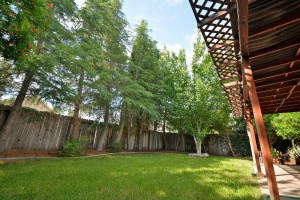 yard, trees and covered patio