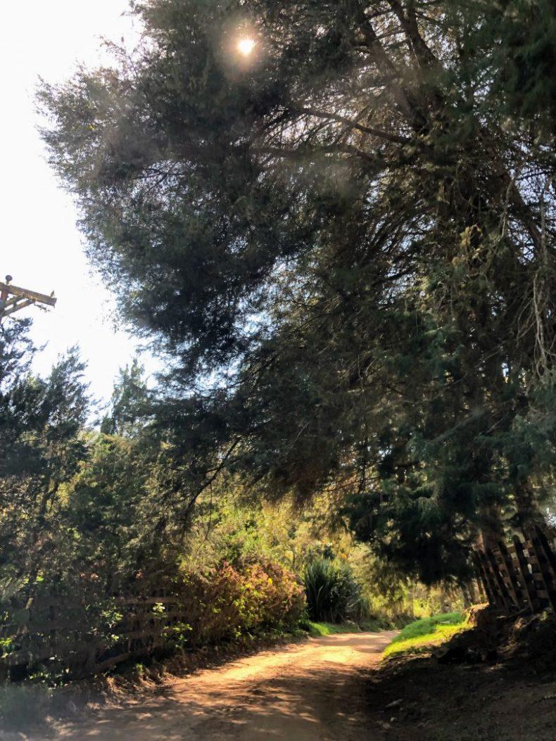 Estrada de terra- Pedra da Macela