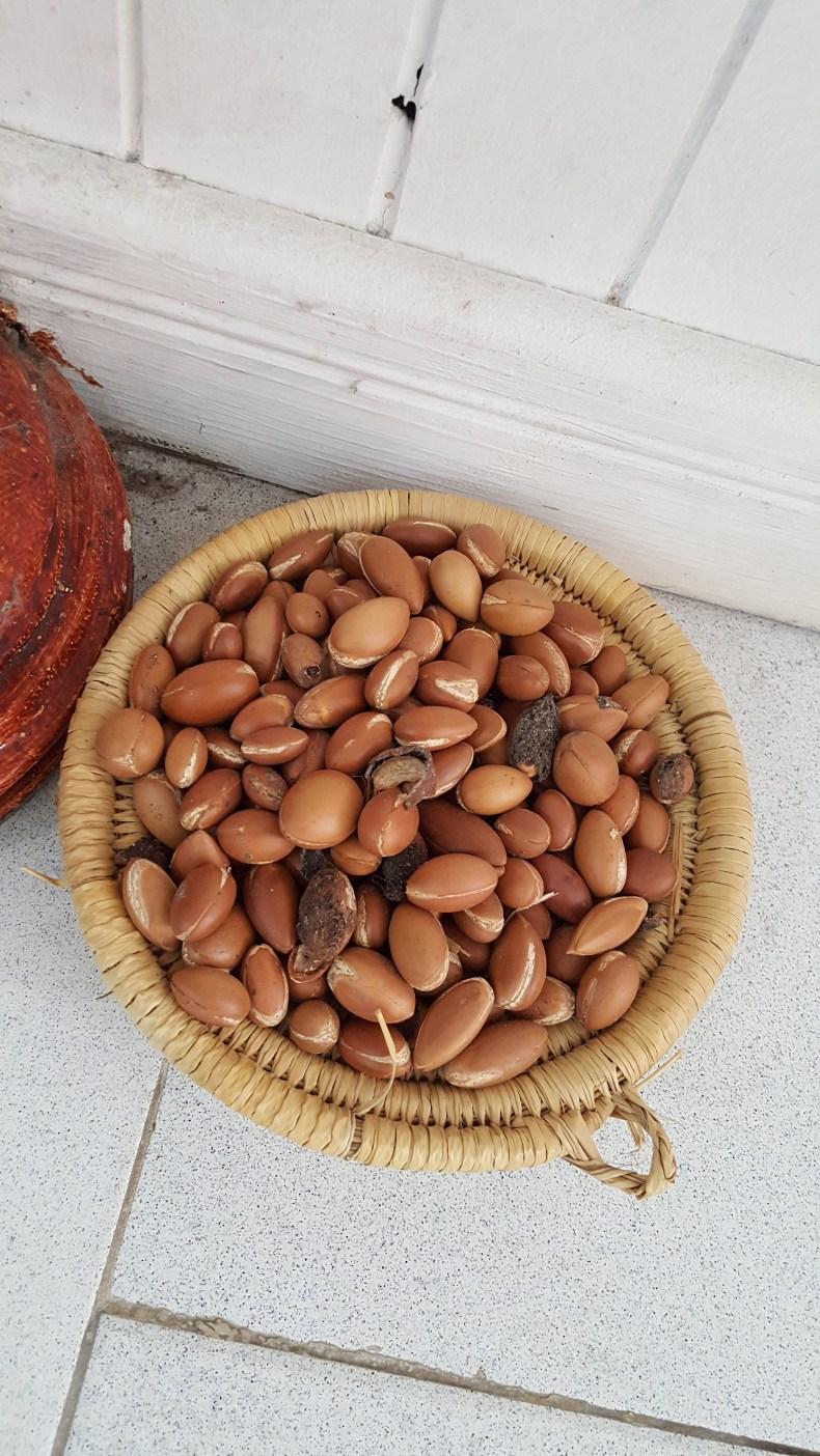As sementes de Argan. Foto tirada em uma loja de cosméticos em Essaouira, Marrocos  árvore de Argan e o pé de Cabra enfim enquanto então entretanto eventualmente igualmente inegavelmente inesperadamente mas outrossim pois porquanto porque portanto posteriormente precipuamente primeiramente primordialmente principalmente salvo semelhantemente similarmente