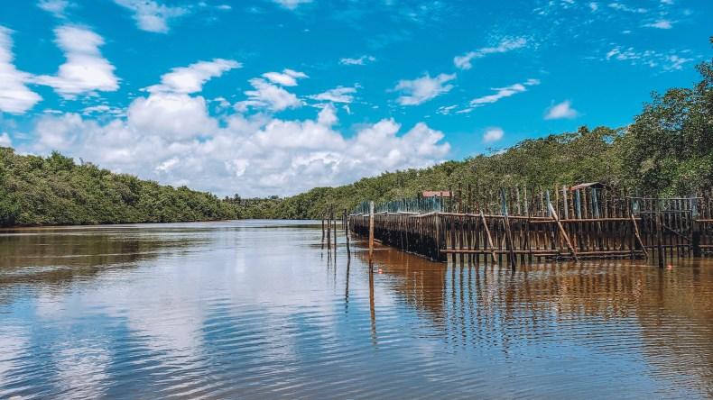 Rio Tatuamunha na Rota Ecológica em Alagoas