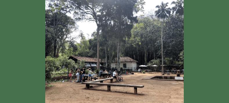 Se você tem dúvidas de onde fazer seu piquenique no Rio de Janeiro, RJ: O parque Jardim Botânico é um dos melhores locais no quesito segurança e organização.