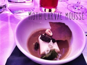 Deliciousness of Insects - Moth Larvae Mousse
