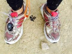 Muddy Trainers