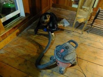 One of many vacuum passes.