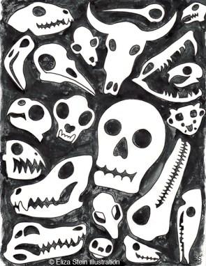 Skull Pattern Sketch