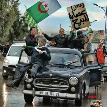 مسيرات اليوم في الجزائر 2019 صور وفيديوهات