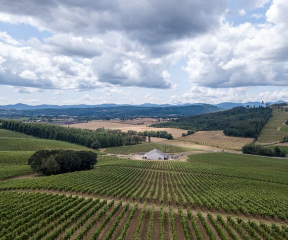 Aerial photo of Mount Richmond Vineyard and the Elk Cove barn