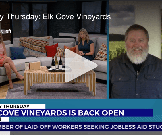 Owner Winemaker Adam Campbell on KOIN TV Thirsty Thursday