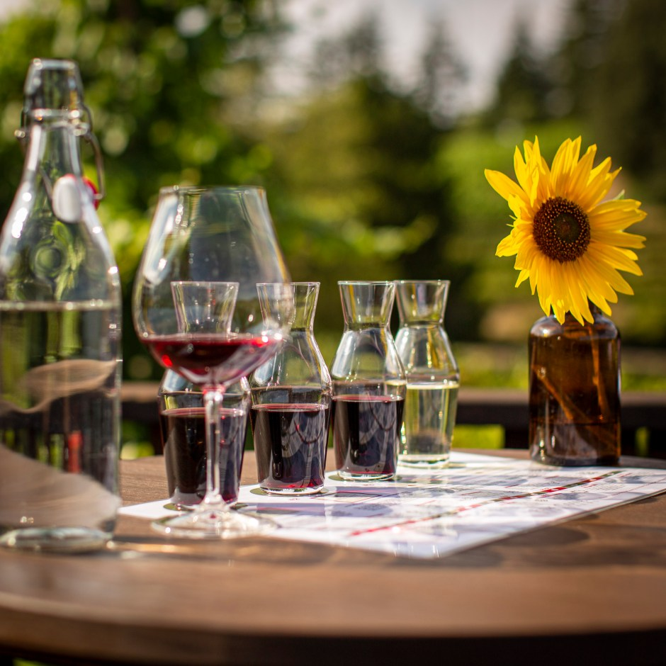 wine tasting in carafes with a sunflower