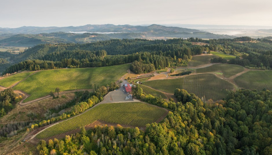 Aerial Photo of Elk Cove's Estate Vineyards, Gaston, Willamette Valley, Oregon