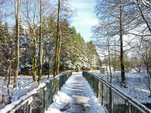 Brücke-vor-Schlebuschrath