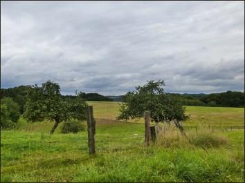 Eselsweg (13)