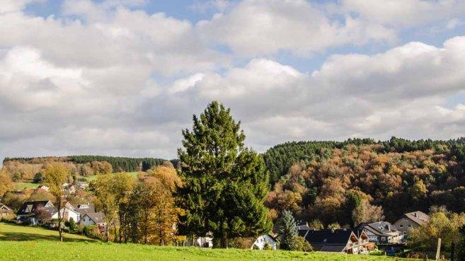 Steinhauerpfad_0212