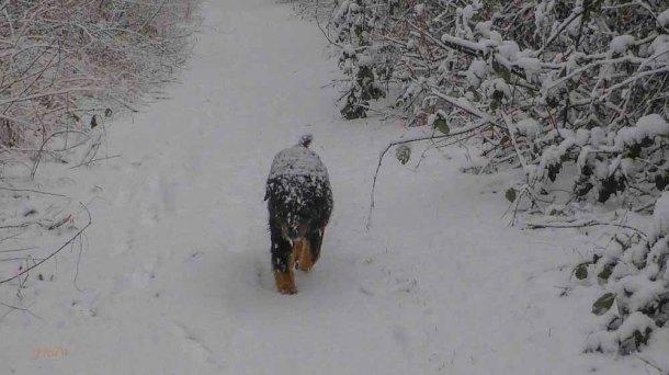 2015 01 24_Homezone im Schnee_0022