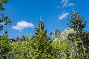 Urlaub Harz 2015_0475