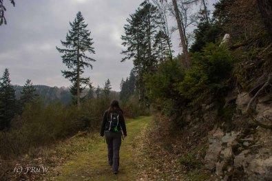 Traumschleife_Altlayer Schweiz (15)