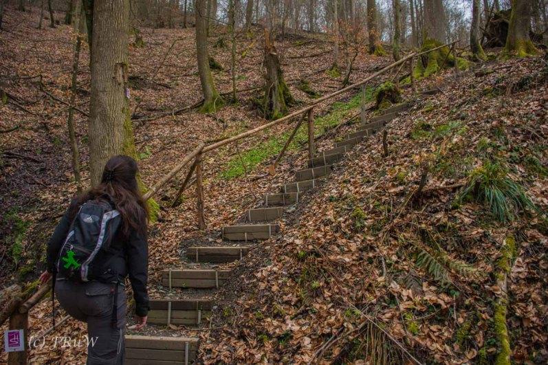 Traumschleife_Altlayer Schweiz (85)