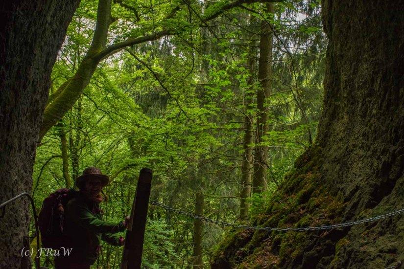 Gerolsteiner Felsenweg (116)