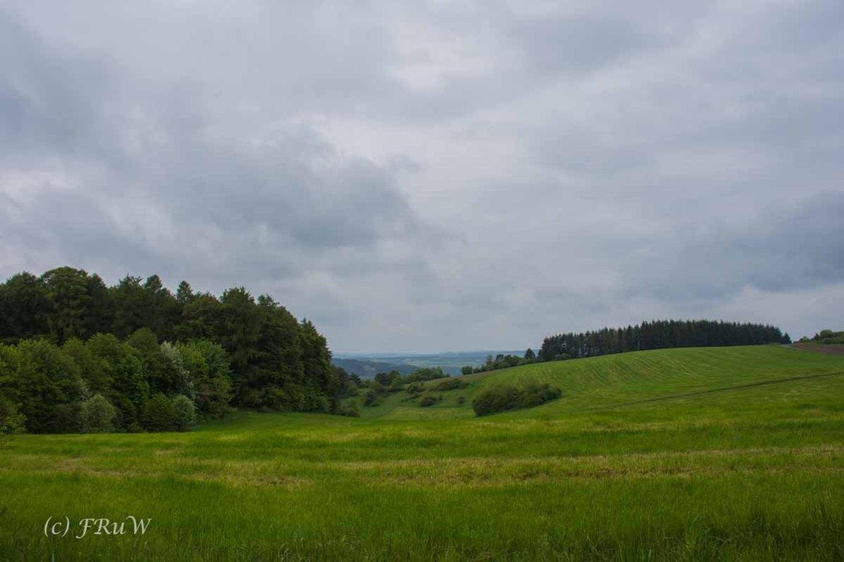 Gerolsteiner Felsenweg (36)