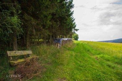 Nikolausweg_0104