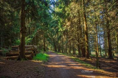 fuchskaute_erlebnisschleife_westerwald-170