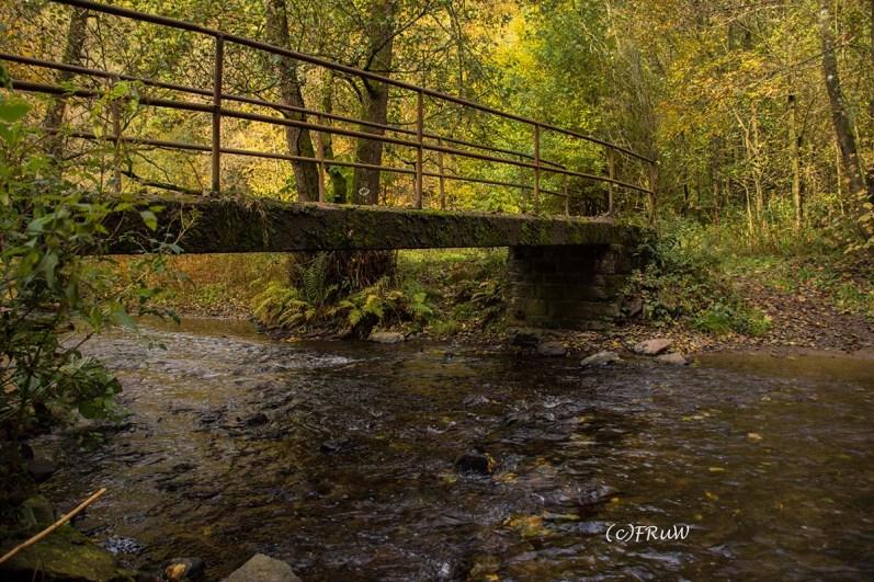 Brücke am Eifgenbach