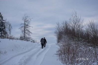 bergischerstreifzugwacholderweg-43