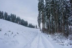 bergischerstreifzugwacholderweg-44
