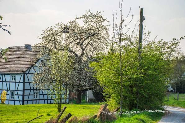 Schoellerhof_Grimberg-(47)