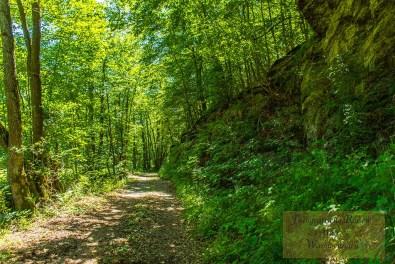 Sechs-Eichenrunde-Raßberg (123)
