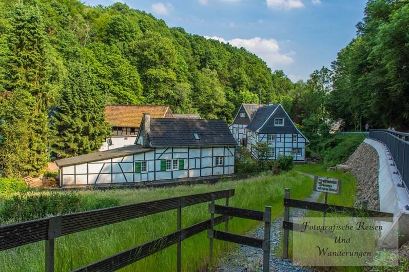 Tippeltour-Rund-um-Leichlingen (156)