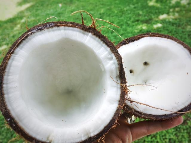 creamy-coconut-milk-3