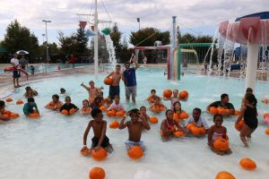 Elk Grove Pool of Pumpkins Water Pumpkin Patch