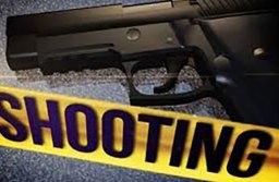A Friday Night Shooting at Wackford Community Park in Elk Grove