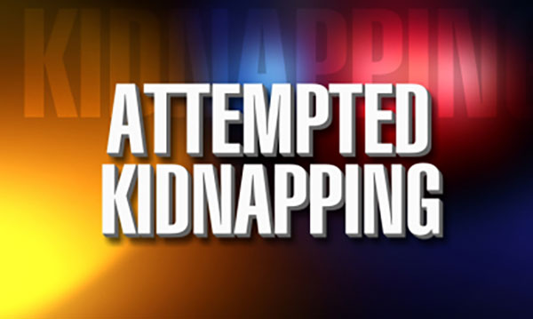 Kidnapping Attempt In South Sacramento