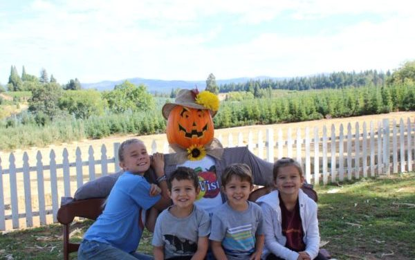 Apple Hill Best Places To Visit