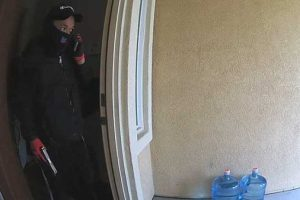One of thieves seen here. Still capture of the surveillance video courtesy of Kevin Valone.