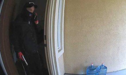 Surveillance Video Captures Burglars In Elk Grove